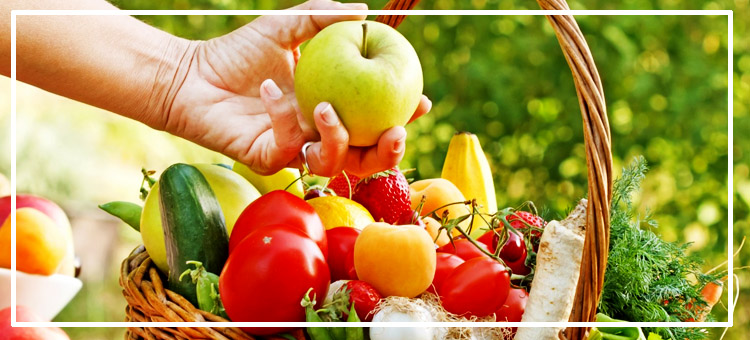 Organik Beslenmenin Önemi Üzerine